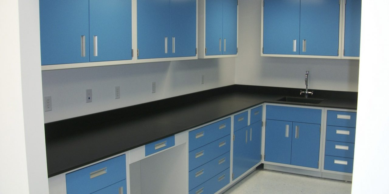 Dulapuri de laborator din PP